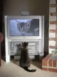 Analóg TV adás